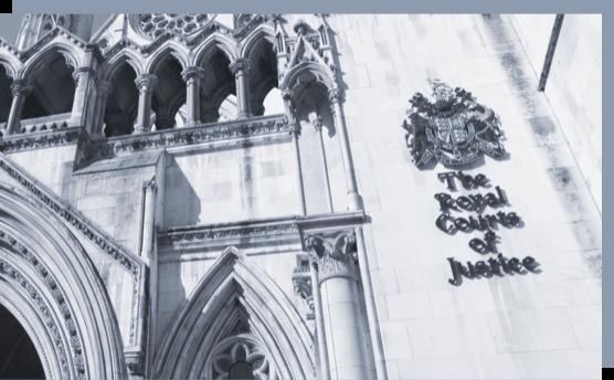 Litigation funding services